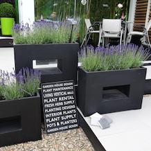 Designer Rectangle Planters