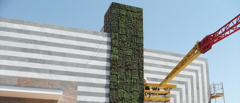 Link to page Picture of a living wall by Garden House Design