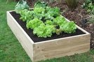 Spring Specials - Raised Vegetable Planters