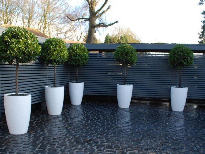 Low maintenance gardens benefit from the magic of low for Garden house design uk