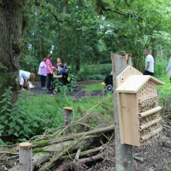 A shot from the opening of the woodland walk at Chestnut Tree House