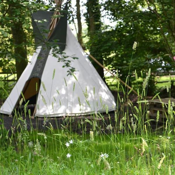 A special tipi with Wildflower Turf in the Woodland Wonderland at Chestnut Tree House