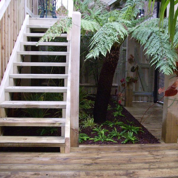 Decking and stairs with some amazing planting