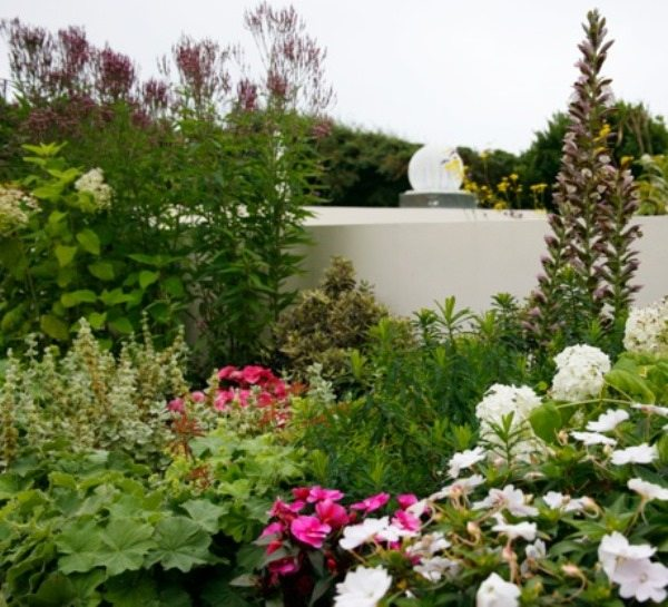 A flurry of plants surrounding a bespoke water feature installed by Garden House Design