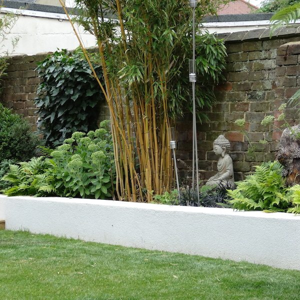 Urban garden with raised wall and bamboo plants as well as other plants and accessories