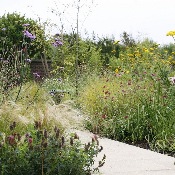 Flower beds with Wildflower Turf on each side of a pathway built by Garden House Design