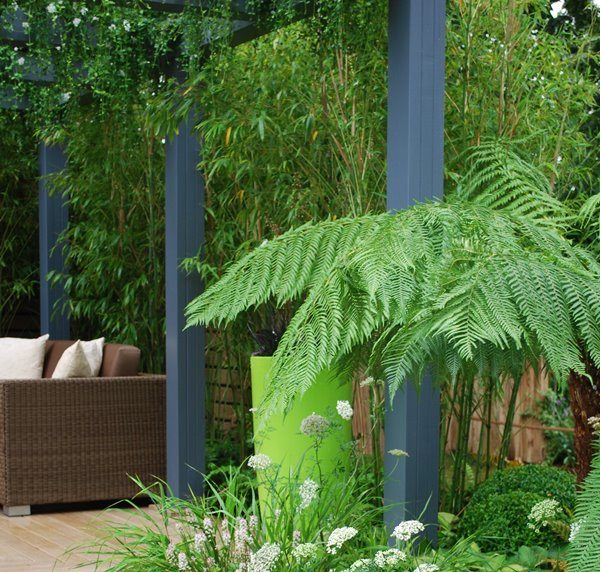 A closer look at our show garden from Hampton Court 2012 with our favourite planters/plants