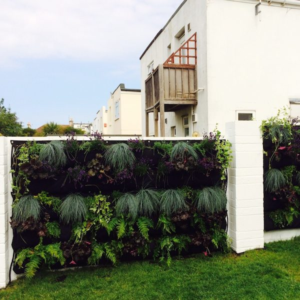 A living wall created with Woolly Pockets at a residential area
