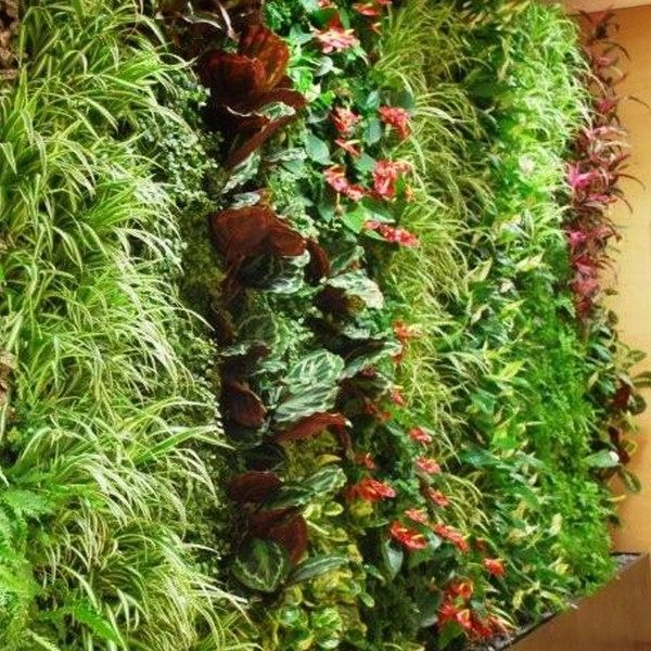 This living wall, created by numerous Woolly Pockets, brings colour and life to the workplace