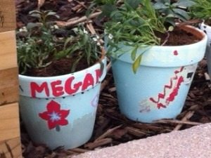 Personalised painted terracotta pots