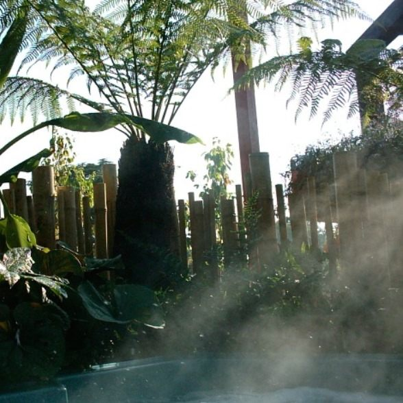 Hot tub steaming while surrounded by lush planting for a show garden