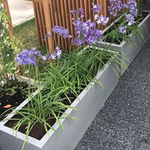View Troughs & Window Boxes products