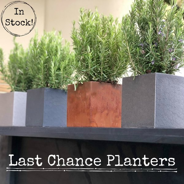 View Last Chance Planters products