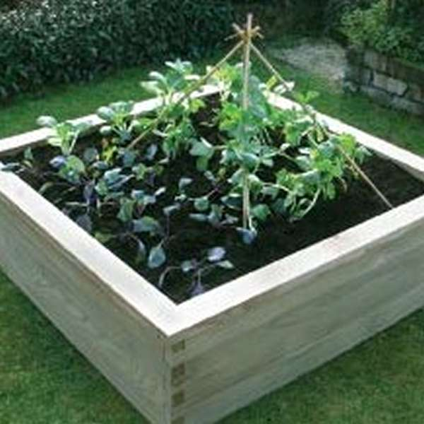 View Wooden Vegetable Gardens products